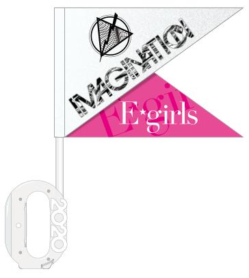 E-girls PERFECT LIVE 2011▶︎2020